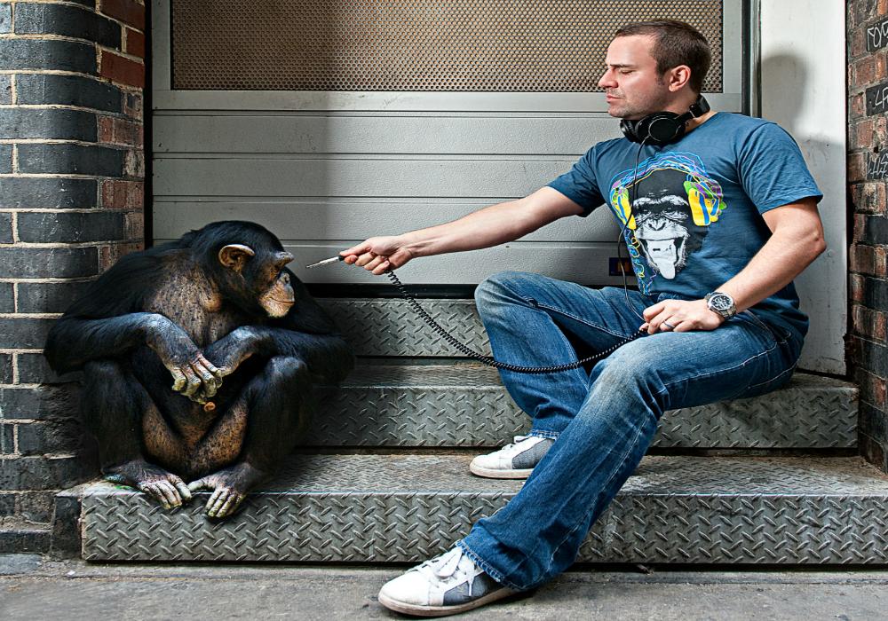 justin_wilkes_chimp_hires 1